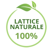 Materassi in Lattice Naturale 100%