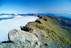 Carnia monte Crostis