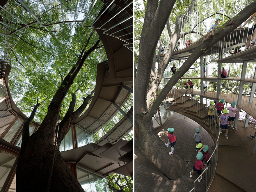 kindergarten-around-tree-zelkova-fuji-tezuka-architects-32 (1)