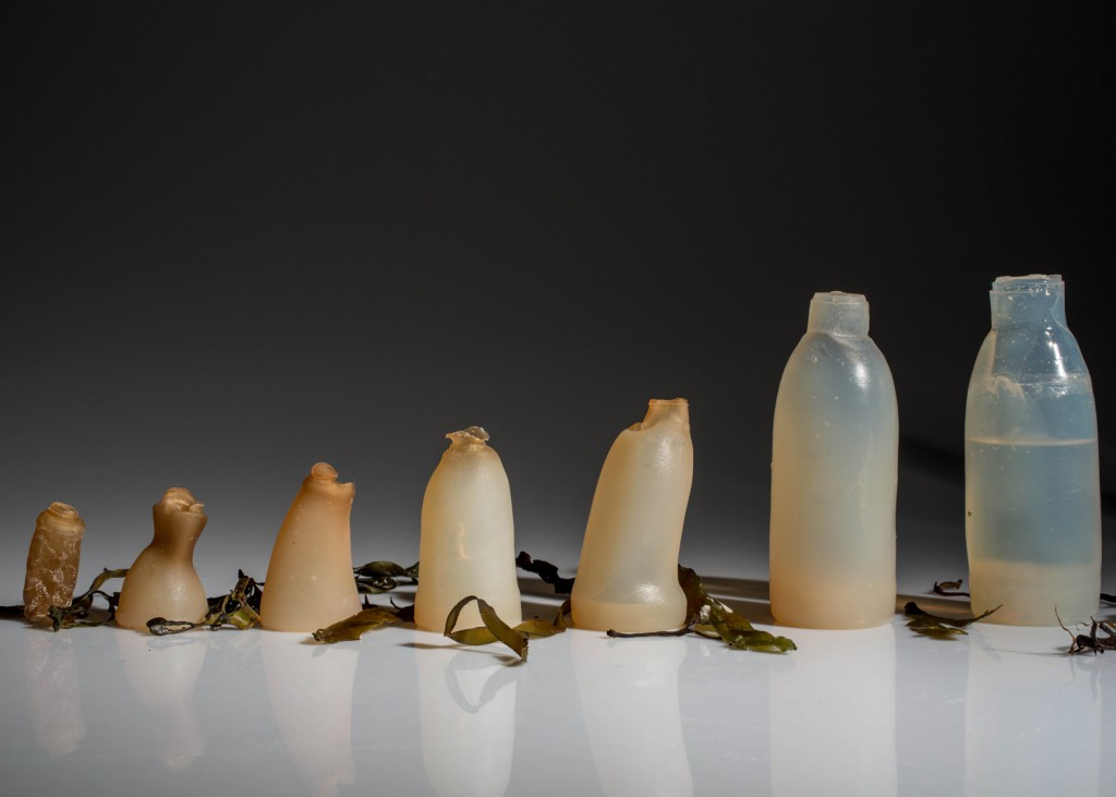 algae-water-bottle-by-ari-jonsson-designmarch_dezeen_ban