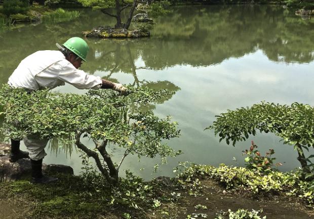 Il segreto di un perfetto giardino giapponese vivere zen for Giardini giapponesi
