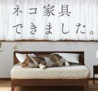 Letti in legno per gatti